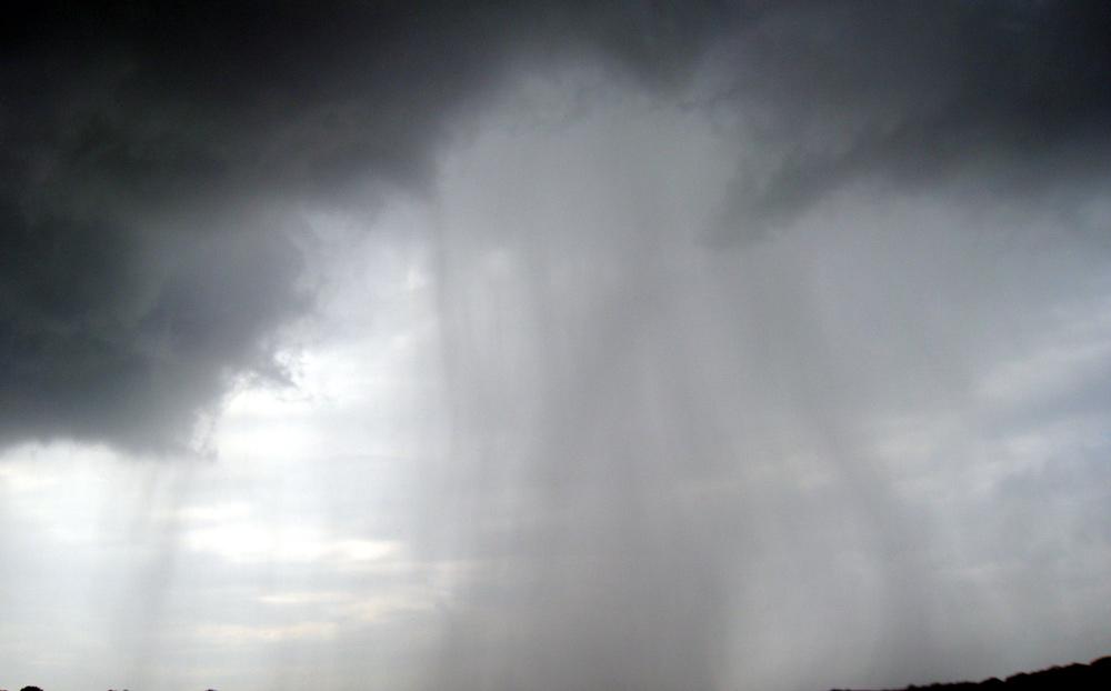 Rain MD. Photo by Ken